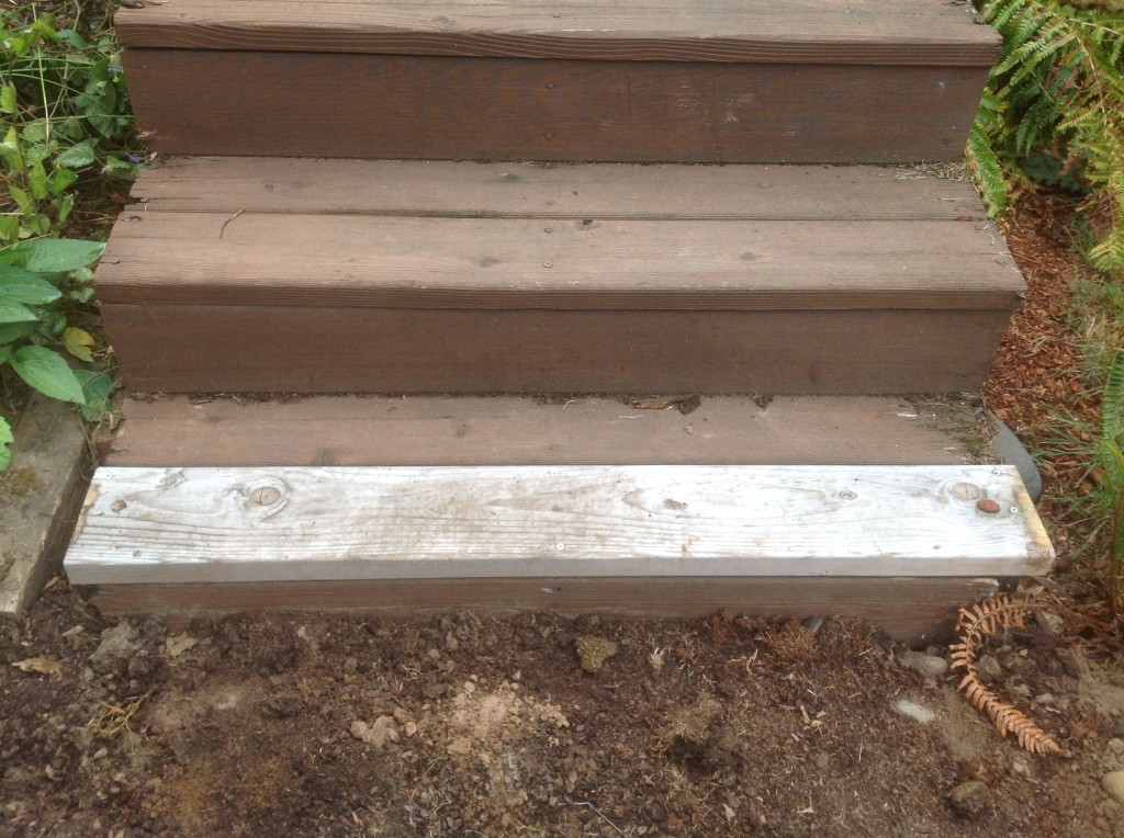 Dry-rotted stairs in need of replacement