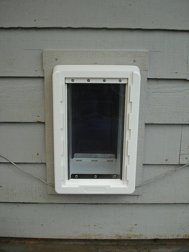 Bragg Construction Custom Pet Door (Exterior View)