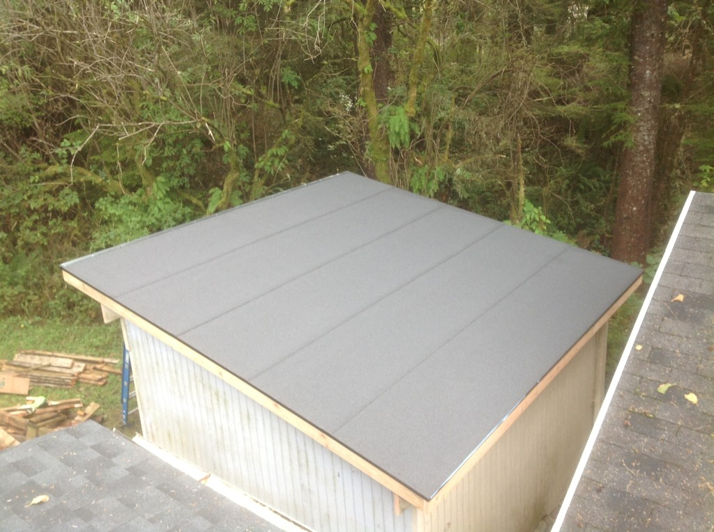 Completed shed roof by Bragg Construction