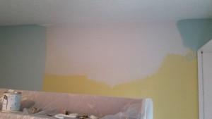 Drywall Repair, Skim, Sand, Prime, Paint