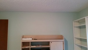 Drywall repair and Painting finished