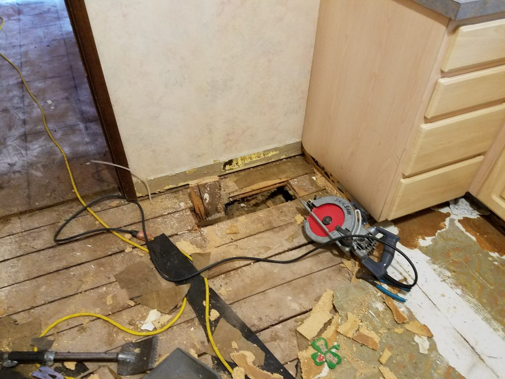Removal of Subfloor revealing Carpenter Ant damage